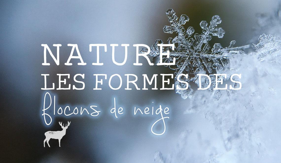 Les formes des flocons de neige colonne illustré