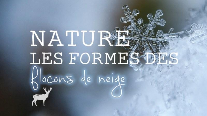 Identifier les formes des flocons de neige