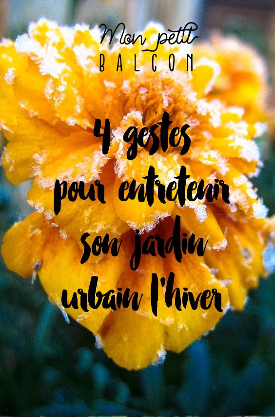 4 gestes pour entretenir son jardin urbain l'hiver pinterest
