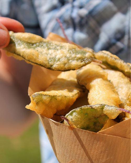Green revue : cuisner veggie en toute simplicité   Mon petit balcon
