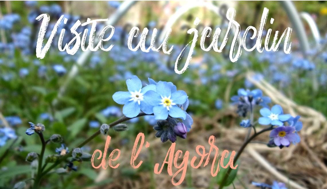 Mes petits pas verts #2 : jardin partagé de l'Agora à Nanterre