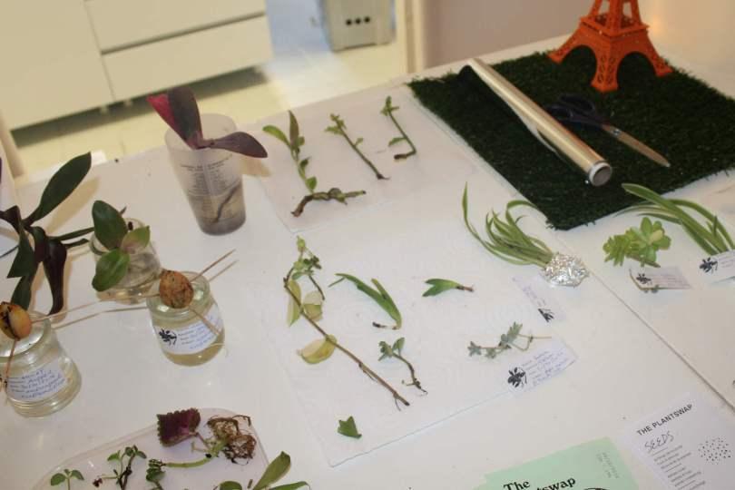 troc de plantes avec seeds brussels chez le Bumplab à Paris