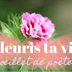L'OEILLET DE POÈTE EN BOUQUET, MARIAGE, COMPOSITIONS, BOUQUET DE SAISON