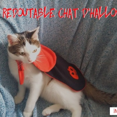 Le félin costume d'Halloween sur mesure