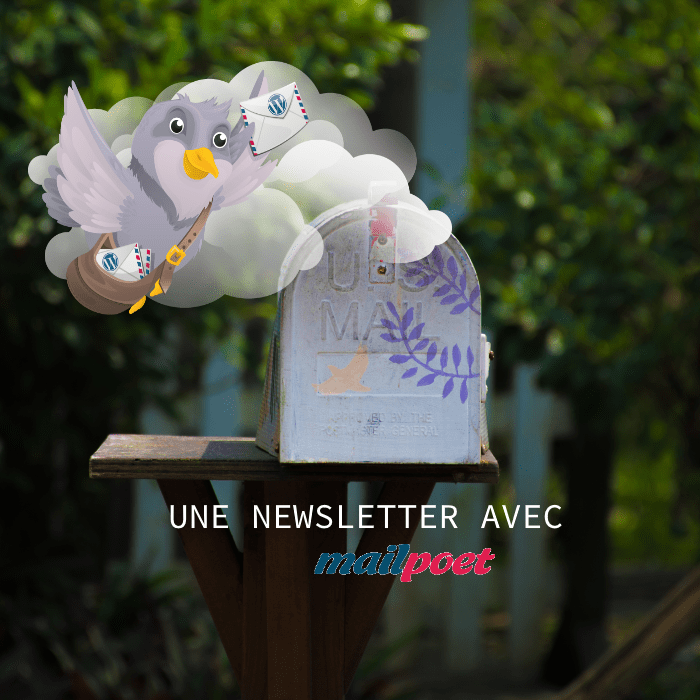 "Newsletter : je teste l'extension ""MailPoet"""