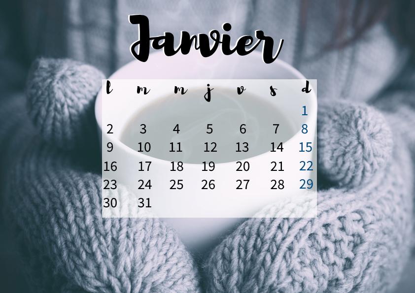 calendrier-janvier-2017