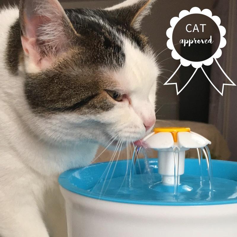 suki fontaine a eau