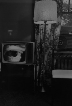 Lee Friedlander ©Monsieur Benedict