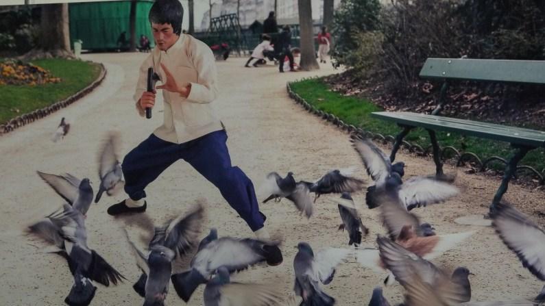 """Toy Story """"Bruce Lee vs Pigeons"""" par Clarisse Rebotier ©Monsieur Bénédict"""