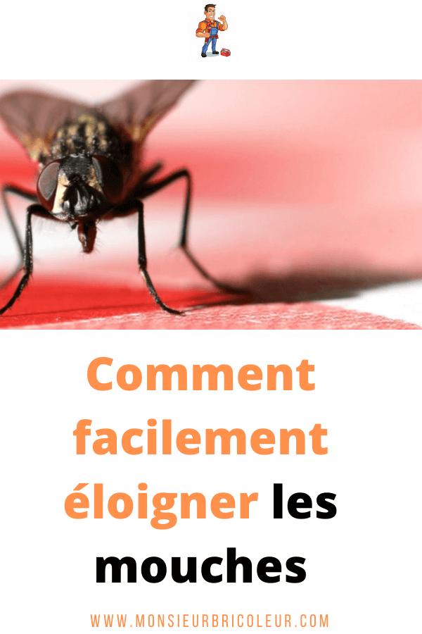 Comment éloigner Les Mouches à L'extérieur : comment, éloigner, mouches, l'extérieur, Monsieur, Bricoleur