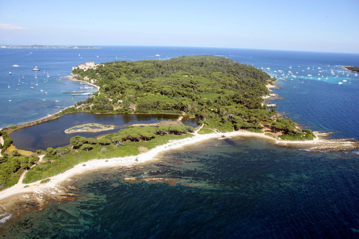 île Saint-Marguerite et sa forêt Source: Flickr