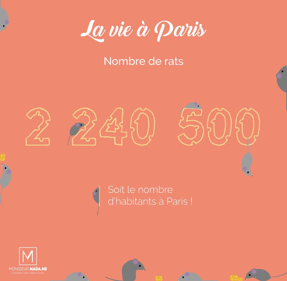 Monsieur Madame La vie à Paris : le nombre de rats