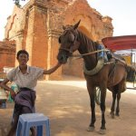 Shan and your horse Tutu…for helping us see all of Bagan's big temples in one day. 07/30/11.