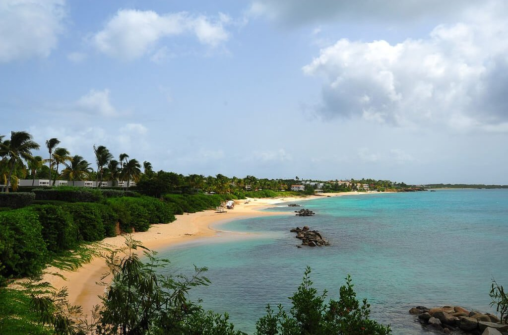 Angsty Anguilla