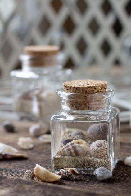 recolectar elementos naturaleza playa verano