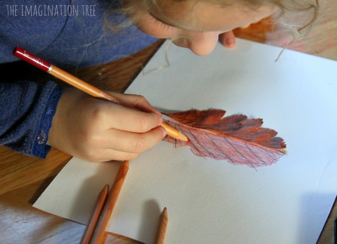 Drawing-half-leaf-mirror-pictures-a-nature-art-activity-for-kids-680x493