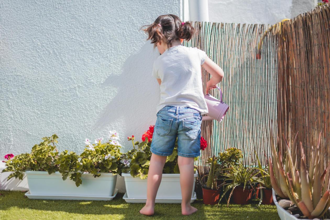Recursos trabajar medio ambiente y reciclaje para niños - Plantas y huerto