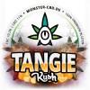 Tangie Kush 3g • 11% CBD Premium Elite Blüten 2