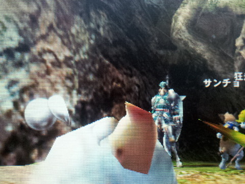 mh4プーギー