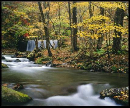 モンハンっぽい風景画像45