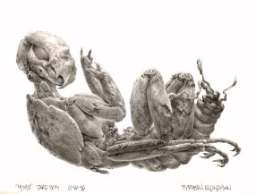Concept art of the Mimic Juvenile by TyRuben Ellingson.