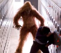 The Sasquatch.