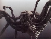Shelob concept by Alan Lee.
