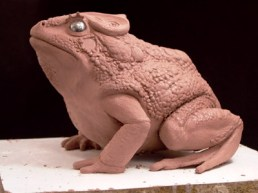 The toad maquette.