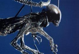 Alien3rodpuppetcrouchblue