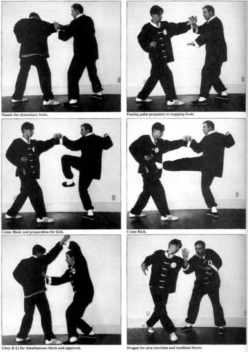 kung fu techniques