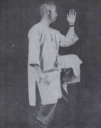 tai chi chuan instruction