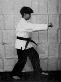 karate chi