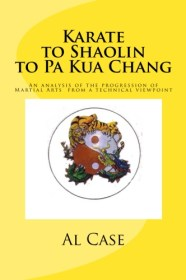 kung fu training manual