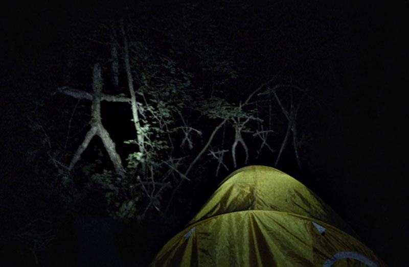 Blair witch scena alberi