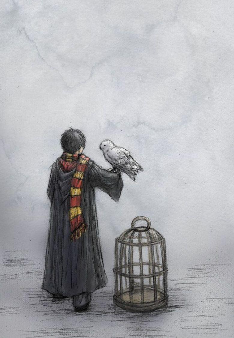 Harry con la civetta Edvige