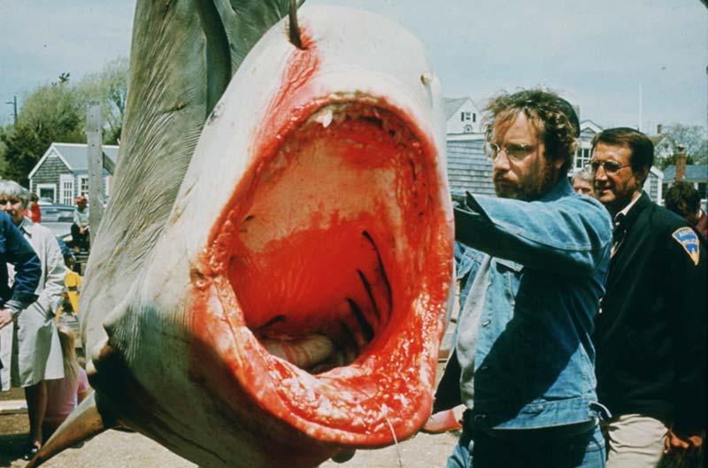 Jaws 2 squalo tigre catturato