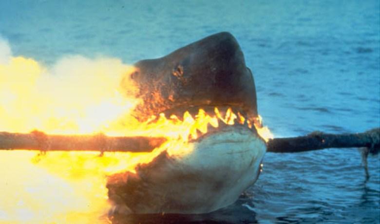 Jaws 2 cavo elettrico