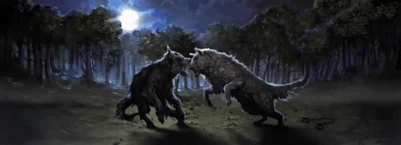 Sirius Black contro Remus Lupin trasformati