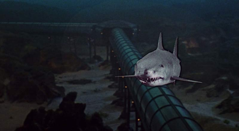 Jaws 3d fotomontaggio