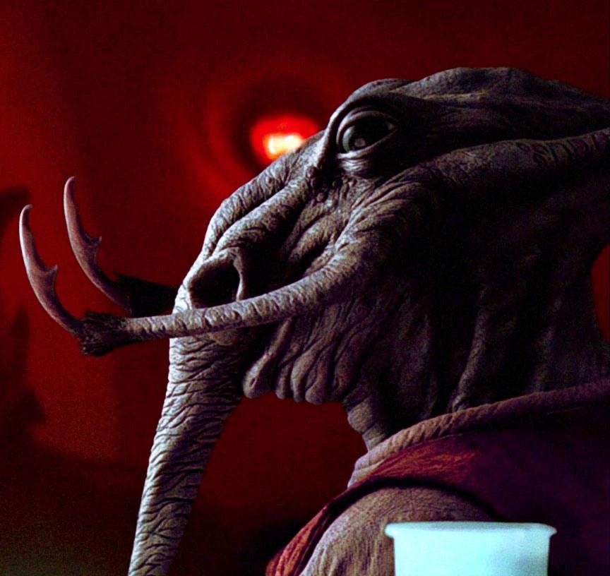 Star Wars Pacithhip specie