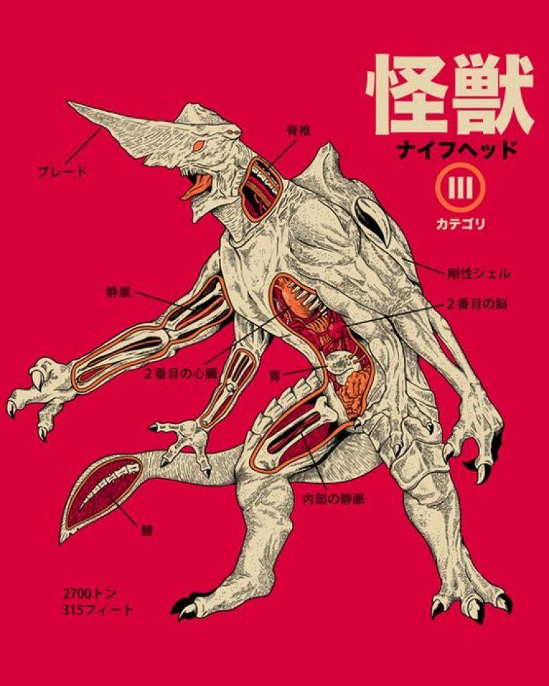 File giapponese con anatomia di Knifehead