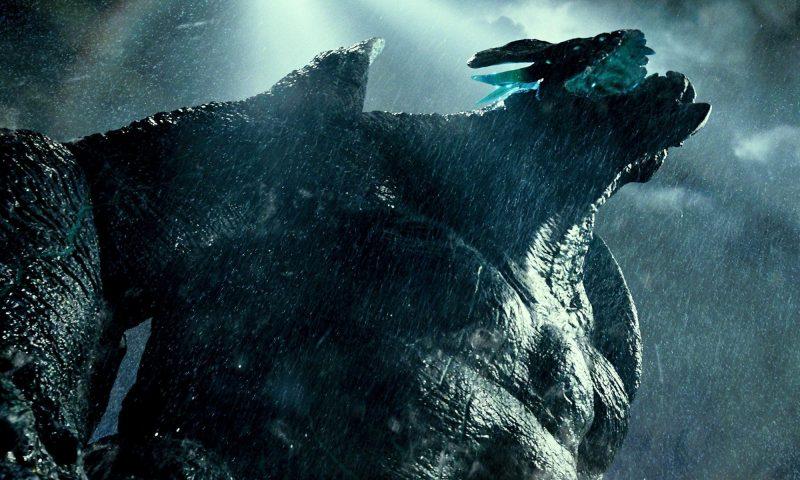 Leatherback nel film