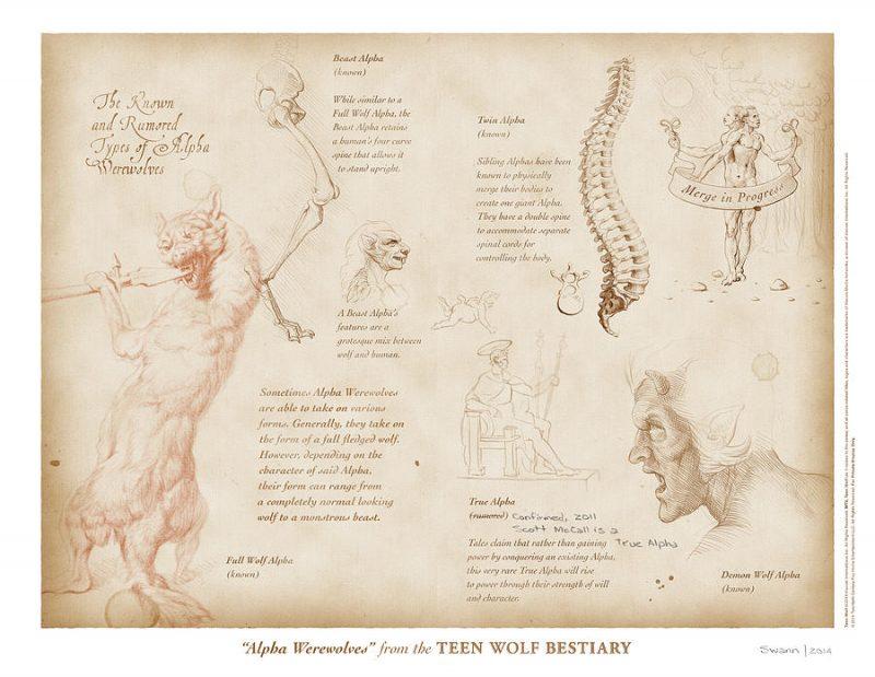 Anatomia licantropo Alfa Bestiario di Teen Wolf