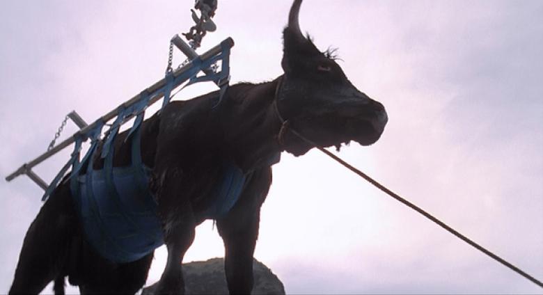 Jurassic Park mucca per Velociraptor