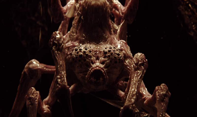 ragno gigante love death and robots