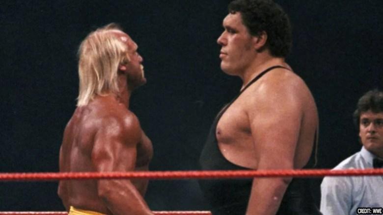 Hogan vs André the Giant
