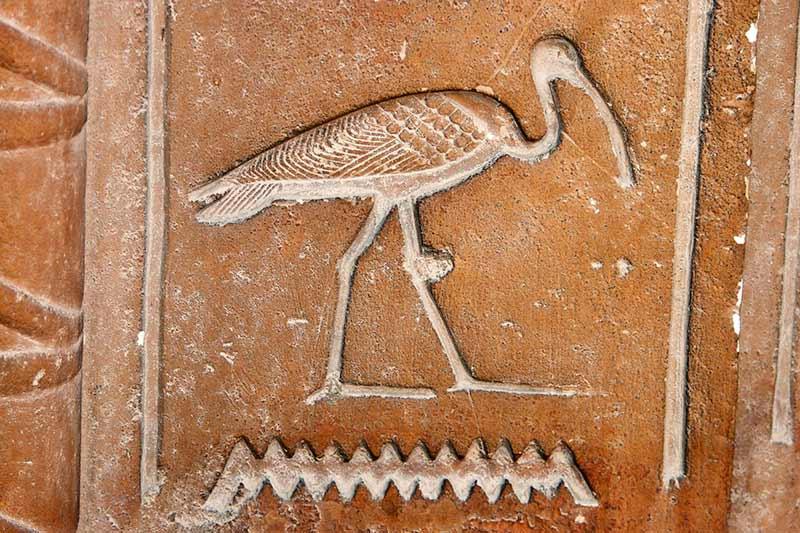 Ibis Akhti geroglifico