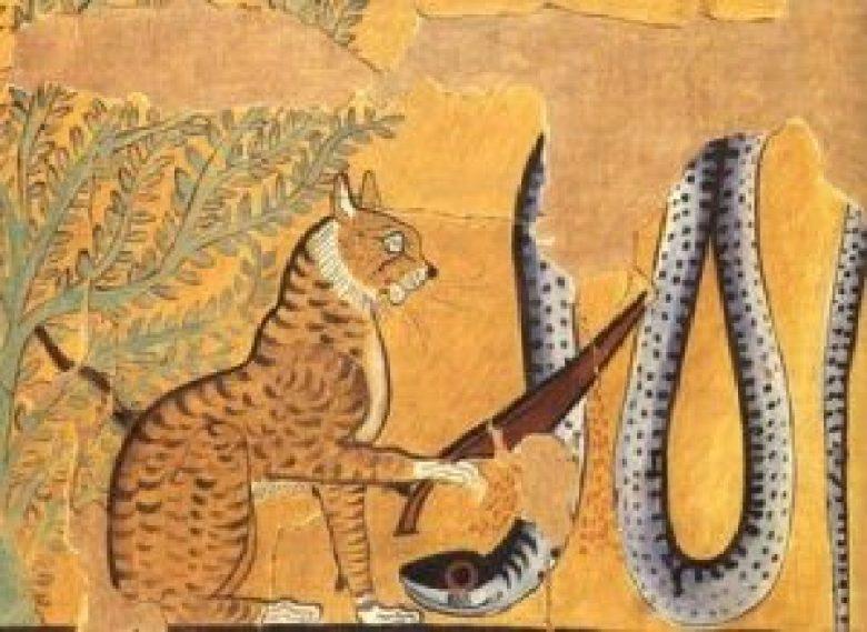 Pakhet dea leonessa pittogrammi