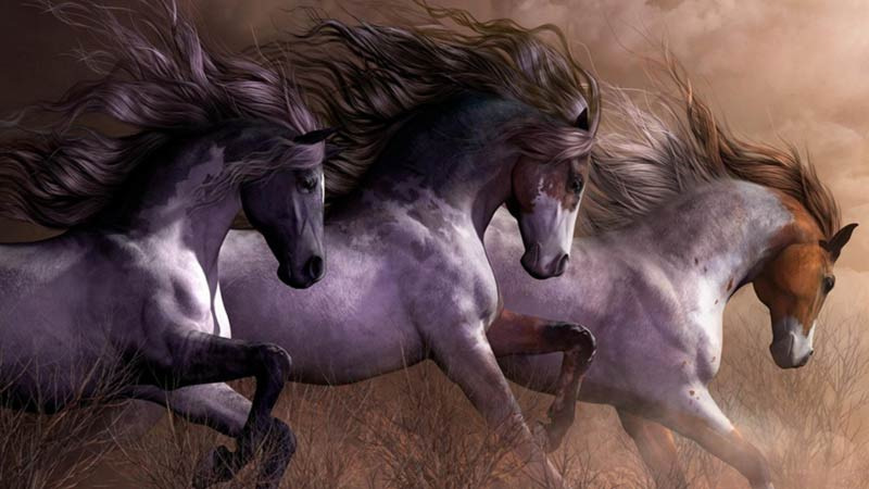 Cavalli nella prateria artwork
