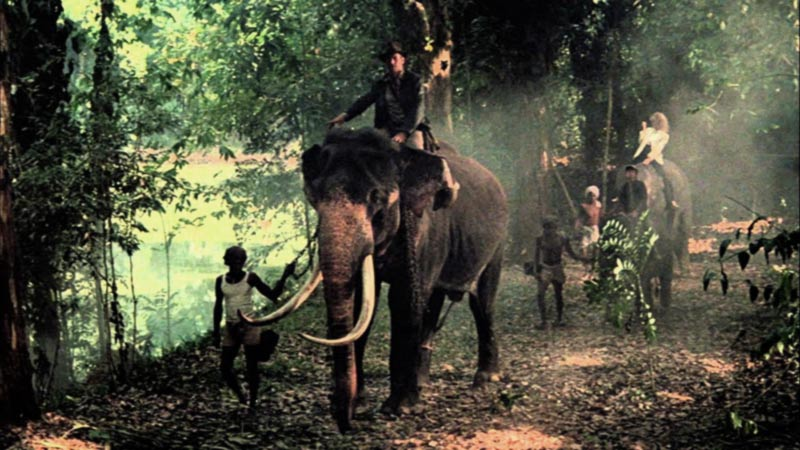 Indiana Jones tempio maledetto elefanti